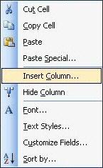 Column Menu